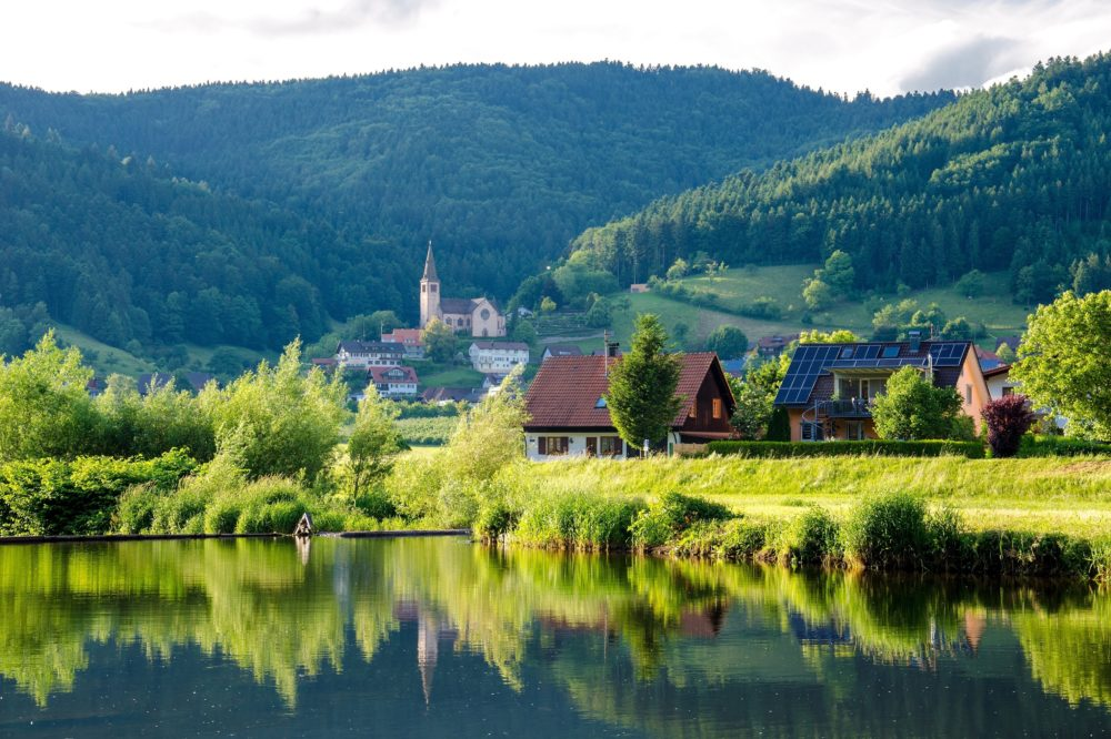 black-forest-conifer-countryside-158316